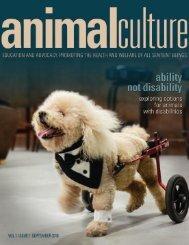 Animal Culture Magazine