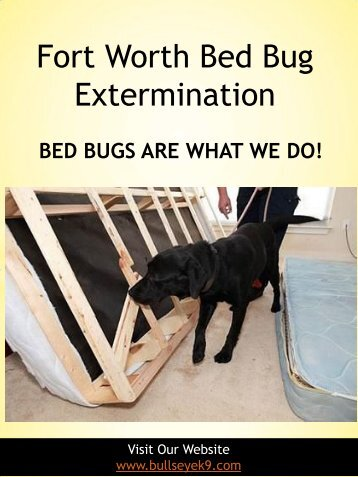 Fort Worth Bed Bug Extermination