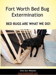 Bed Bug Exterminator Dallas | 4692000637 | bullseyek9.com