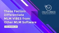 These Factors Differentiate MLM Vibes from Other MLM Software
