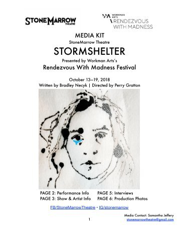 Stormshelter at the Rendezvous With Madness Festival - Media Kit