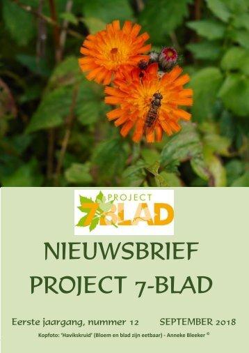 2018.09.22-PROJECT-7-BLAD-NIEUWSBRIEF-12-LV