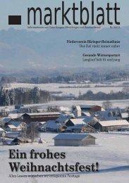 Aktuelle Ausgabe Marktblatt 04/2011 - Markt Unterthingau