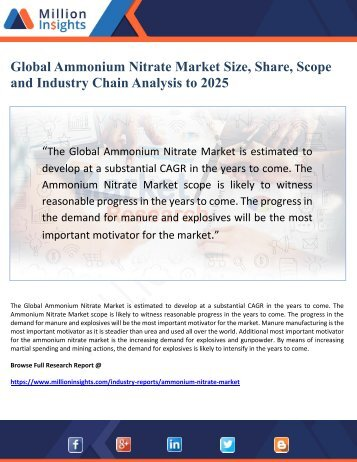 Global Ammonium Nitrate Market Size, Share, Scope  and Industry Chain Analysis to 2025