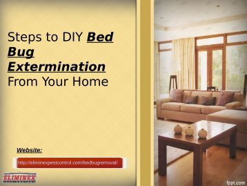 Steps to DIY Bed Bug Extermination From Your Home