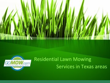 Lawn care services in Texas