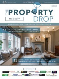 Property Drop Issue 37