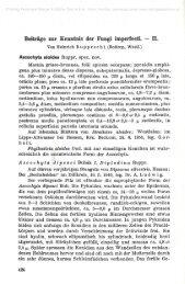 Beiträge zur Kenntnis der Fungi imperfecti. — II.