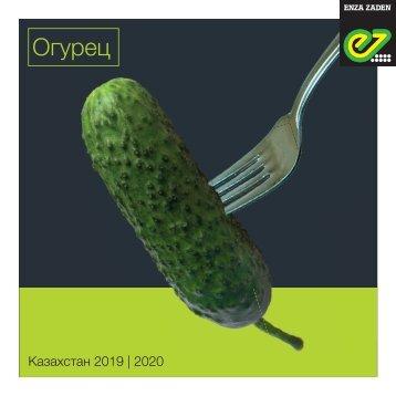 Brochure Kazakhstan Cucumber 2018