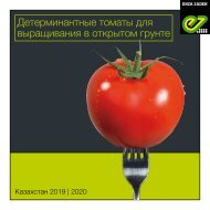 Brochure Kazakhstan Tomato OF 2018 | 2019