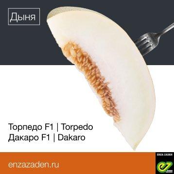 Leaflet Russia Torpedo 2018