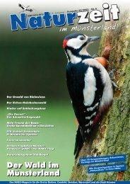 Warum Waldweide zum Ökosystem Wald dazu gehört - NABU ...