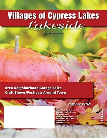 VCL Lakeside October 2018