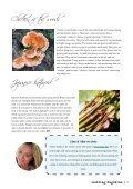 Seedling Magazine - Page 7