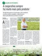Jornal Cocamar Outubro 2018 - Page 3