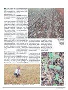 Jornal Cocamar Outubro 2018 - Page 5