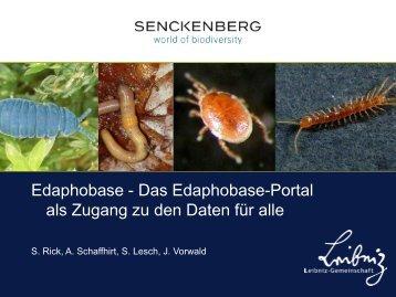 Gliederung - Senckenberg