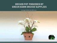 Best Orchid Pot Shop at Greenbarnorchid.com