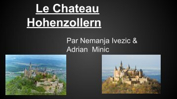 chateau project