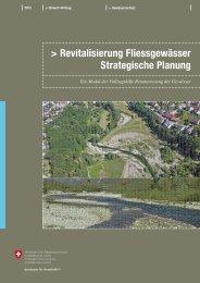 Revitalisierung Fliessgewässer. Strategische Planung - Schweizer ...