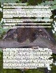 Douglas County Book 10-18 - Page 7