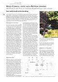 wie pflanzen und pilze mit toxischen schwermetallen ... - Uni-Halle - Seite 2