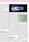 Prinzipien der anti- mykotischen Therapie - Antibiotika Monitor - Page 2