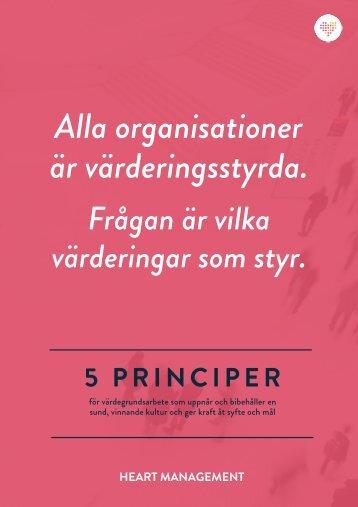 Fem principer för värdegrundsarbete -  PREVIEW