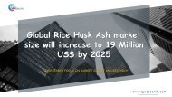 Global Rice Husk Ash market size will increase to 19 Million US$ by 2025