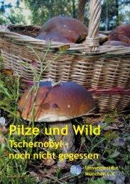 Pilze und Wild: Tschernobyl - Umweltinstitut München e.V.