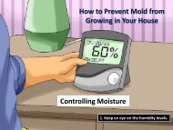 How to Prevent Mold from Growing in Your House