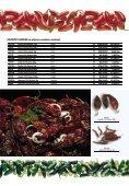 Katalog Front-Line 2018 - Page 7