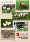 Katalog 2019 DE - Page 7