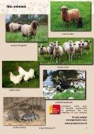 Katalog 2019 FR - Page 7