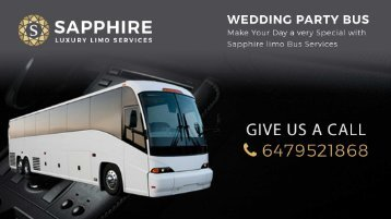 Party Bus Rental by SapphireLimo