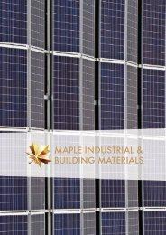Maple Solar - 2018 (LR)