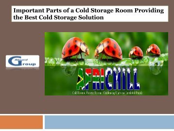 Important Parts of a Cold Storage Room Providing the Best Cold Storage Solution