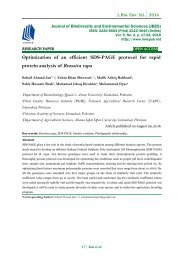 Optimization of an efficient SDS-PAGE protocol for rapid protein analysis of Brassica rapa