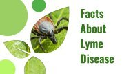 Get The Facts & Accurate Treatment About Lyme Disease