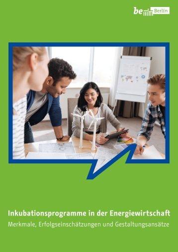 Inkubationsprogramme in der Energiewirtschaft