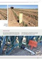 enza_zaden_Champion Leek - Page 2
