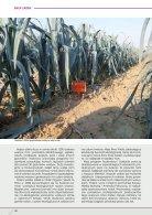 enza_zaden_Champion Leek - Page 3