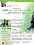 """Leseprobe """"Unsere besten Freunde"""" 2018 - Page 2"""