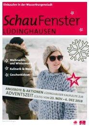 SchauFenster_StandMontag_mitRaster
