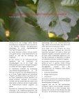 Sprungbrett_Ausgabe 2018_2_Das Netzwerkmagazin des APOLLON Alumni Network e.V. - Page 4
