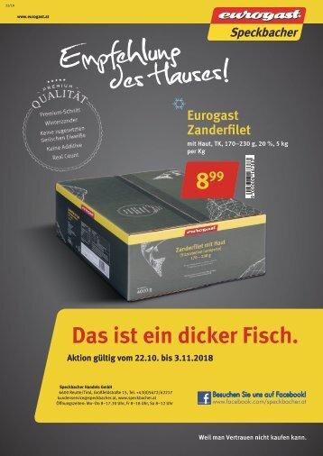 Gastro Flugblatt 22/2018