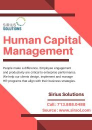 Experts in Human Capital Consulting | Sirius Solutions