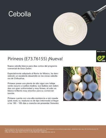 Cebolla Pirineos