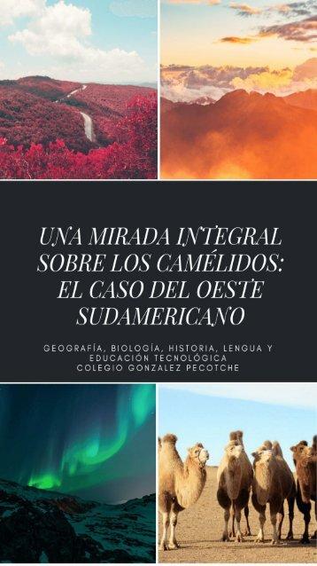 UNA MIRADA INTEGRAL SOBRE LOS CAMELIDOS