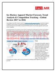 Ice Hockey Apparel Demand